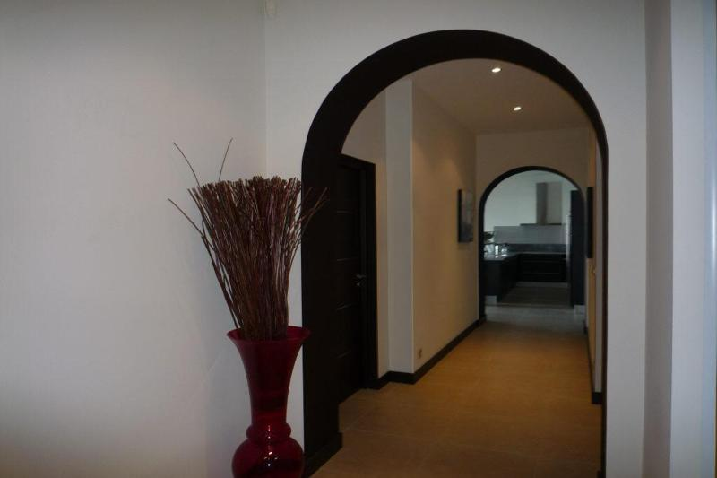 Flower pot in the entrance hallway with white walls and black doors
