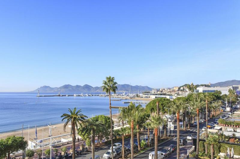 Palm trees, street, mountain and sea view from a group accommodation in Cannes