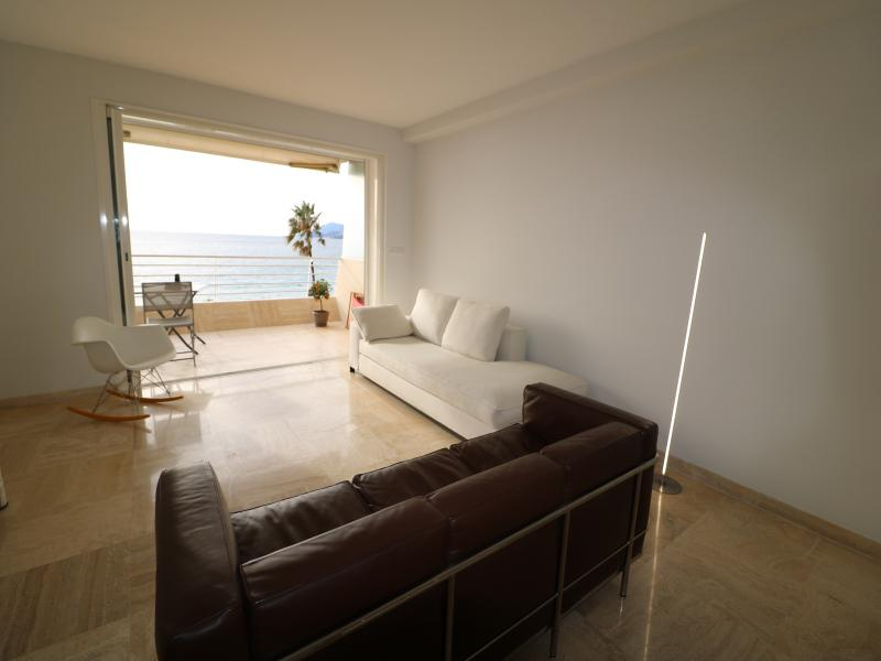 A brown and a white couch set in the living room of a 2 bedroom Cannes sea view apartment for rent in the Suquet